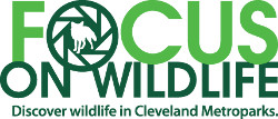 Focus on Wildlife -- Cleveland Metroparks